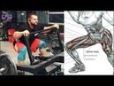 Ejercicios para Construir Piernas Grandes, Exercises to Build Big Legs