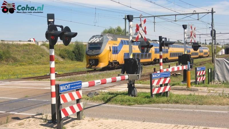 Spoorwegovergang Sint Odiliënberg 😍4K😍 Dutch railroad crossing