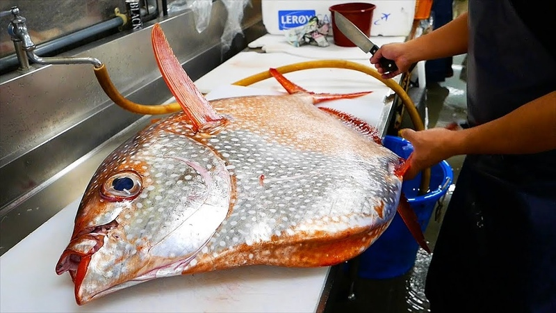 日本路邊小吃 - 巨大 曼波太陽魚 沖繩海鮮