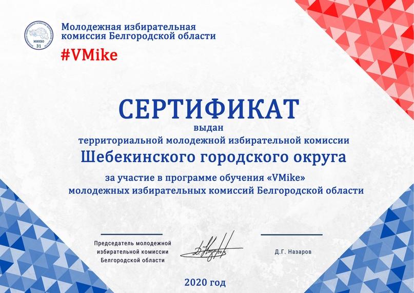 Итоги программы обучения молодежных избирательных комиссий Белгородской области «VMike», изображение №22