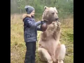 Опасно,медведь не предсказуемое животное