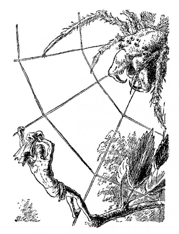 Картинки по запросу разумные пауки фантастика иллюстрации