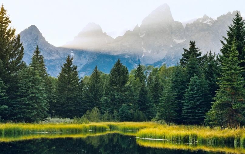 Йеллоустонский национальный парк, изображение №4
