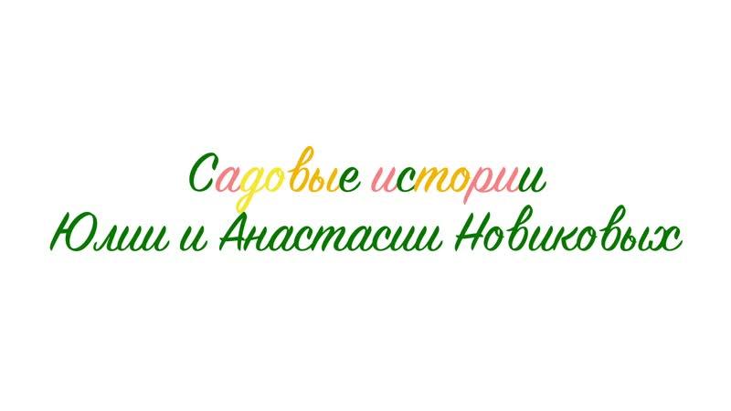 Садовые истории Рассказ Юлии и Анасатасии Новиковых
