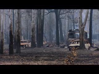Panorama : Australia Burning (BBC One 2020 UK) (ENG/SUB ENG)