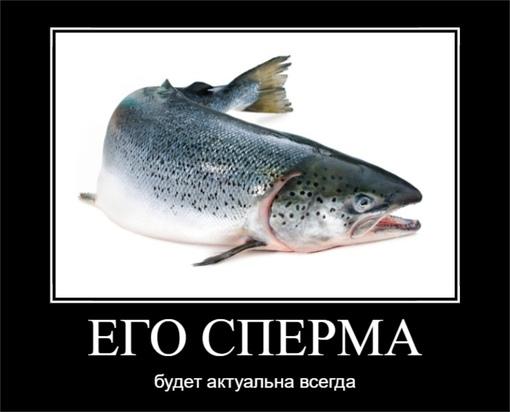 Сперма лосося🐟