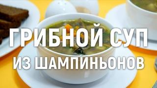 Грибной суп из шампиньонов  — самый вкусный грибной суп