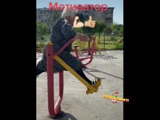Мотивация от бабы Зины