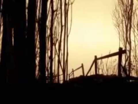 Asia Minor - Nightwind