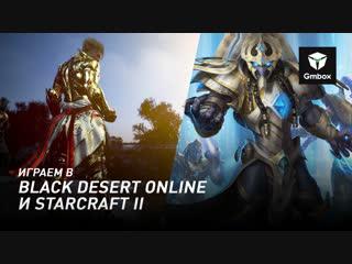 Святослав Бочаров играет в Black Desert Online и StarCraft 2