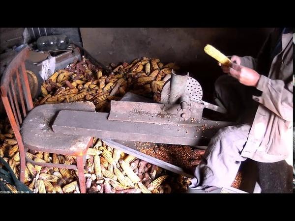 Каким способом из початков кукурузы я получаю чистое зерно
