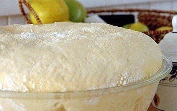 Тесто Как пух Ингредиенты:1 стакан - кефира,0.5 стакана - растительного масла,1 пакетик (11 граммов) сухих дрожжей,1 ч.- ложка соли,1 ст. ложка - сахара,3 стакана- мукиПриготовление:1. Кефир