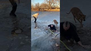 Добрые самаритяне спасают собаку из ледяного озера || ViralHog