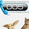 Ветеринарная клиника. Вызов ветеринара 715-60-71