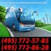 Пассажирские перевозки на автобусах «Фристайл»