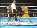 1998-04-18 Gustаvо Сuеllо vs Flоуd Мауwеаthеr Jr 1998-04-18 gustfvj cutllj vs fljed vfewtfthtr jr