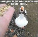 Фотоальбом Дениса Давыдова