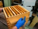 Beeswax strips for Warré top bar beehives