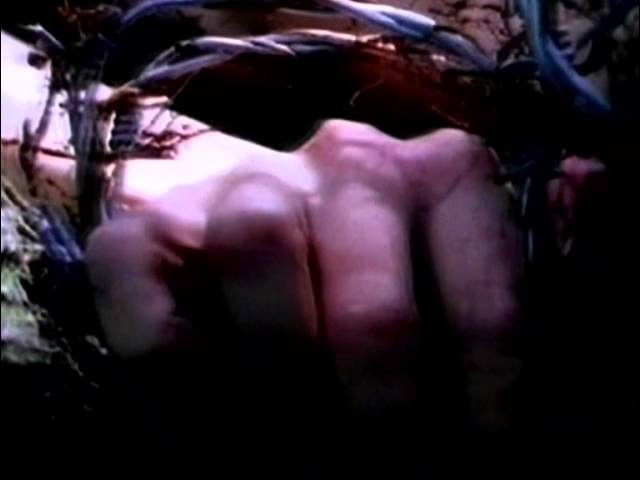 Carcass No Love Lost Official Video