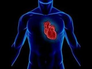 Шифры нашего тела. Сердце