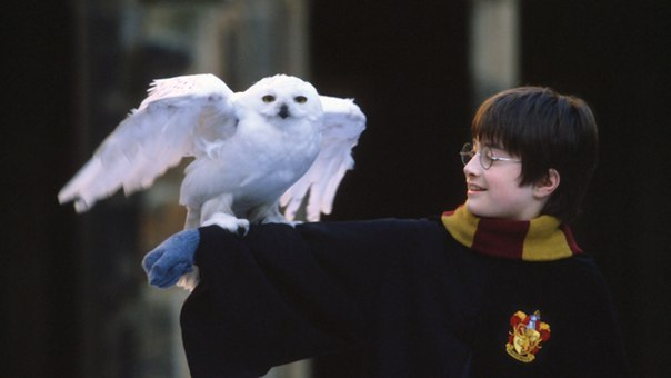 Harry Potter and the Philosopher's Stone |Stephen Fry|