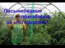 Пасынкование томатов за или против/Growing tomatoes.