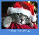 Личный фотоальбом Артёма Абрамова