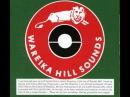 Wareika Hill Sounds Coconut head special