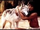 Семейный фильм «Книга джунглей / Маугли» 1994