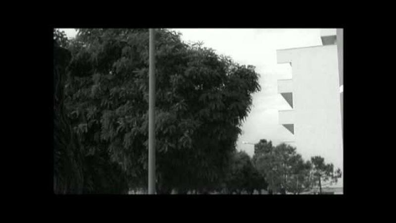 L'Eclisse 1962 Antonioni final scene