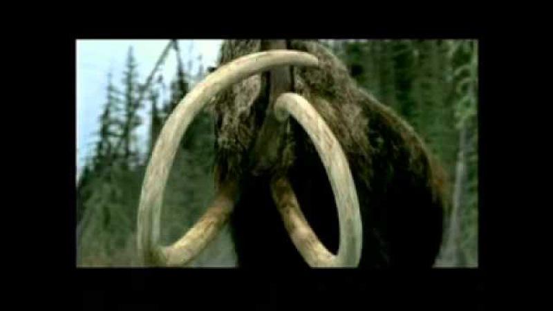 BBC Прогулки с чудовищами flv