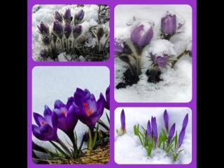 Подснежники из фоэмирана! Весенние цветы! 1 часть Своими руками#