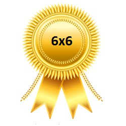 Золотая медаль Чемпионата 6х6