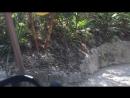 Xplor amfibia