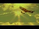 Leo Rojas - El Condor Pasa - Matsuri