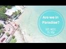 Are we in Paradise? Key West, Fl, USA | Olya Huntley Vlog 49