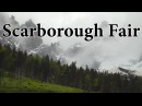 Scarborough Fair - TinWhistler with Ignacio Núñez