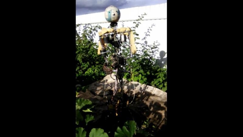 робот Сецуна