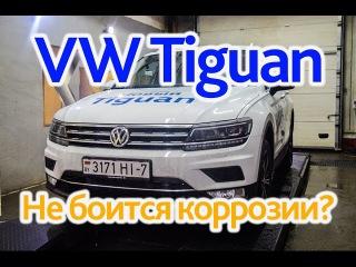VW Tiguan: образцовый антикор?