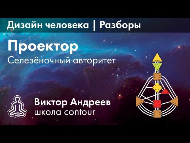 СЕЛЕЗЕНОЧНЫЙ АВТОРИТЕТ В ДИЗАЙНЕ ЧЕЛОВЕКА ► Астродизайн