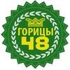 Село Горицы Липецкой области