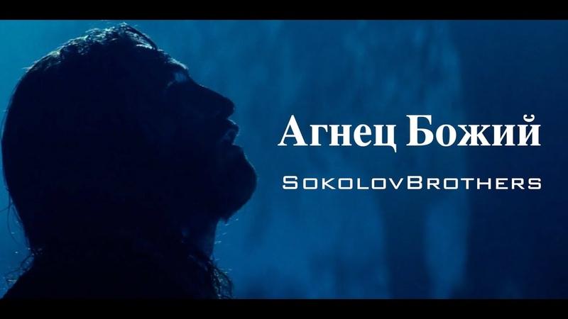 SokolovBrothers Агнец Божий