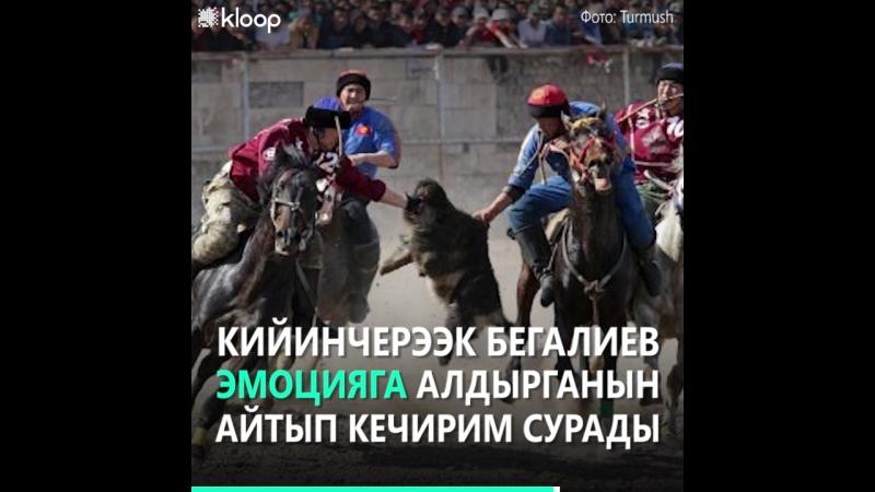 Коомдук тармак спортчуну сынга алгандан кийин, Бегалиев кечирим сурады
