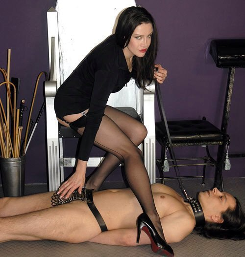 Mistress t on twitter