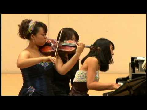 Schumann / Sonata for piano and violin No.1 a-moll op.105 1/3