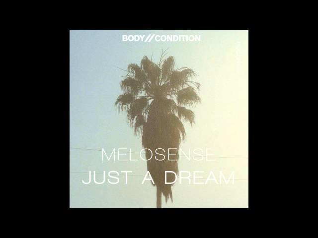 Melosense Just a Dream