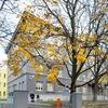 Таллиннская гуманитарная гимназия