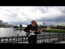 Red Hot Chili Peppers - Don't forget me (bass cover)