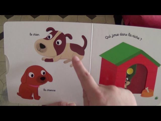 Mon imagier des animaux familiers Histoire pour les enfants en Français