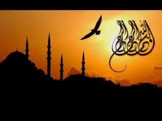 Ты именно Ты Любимец Аллаха!Очень сильная проповедь!Наместники Аллаха на его зем.mp4
